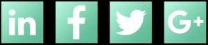 SEO Basics - Social Media Icons